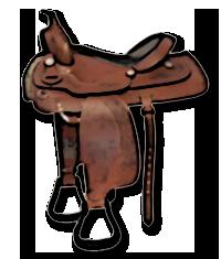 Westernové sedlo běžné